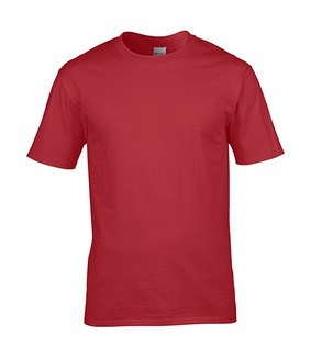 4100 Ring Spun T-shirt
